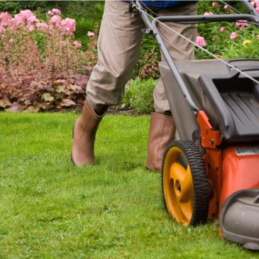 How To Get Your First Lawn Care Customers Within 2 Weeks of Business Launch